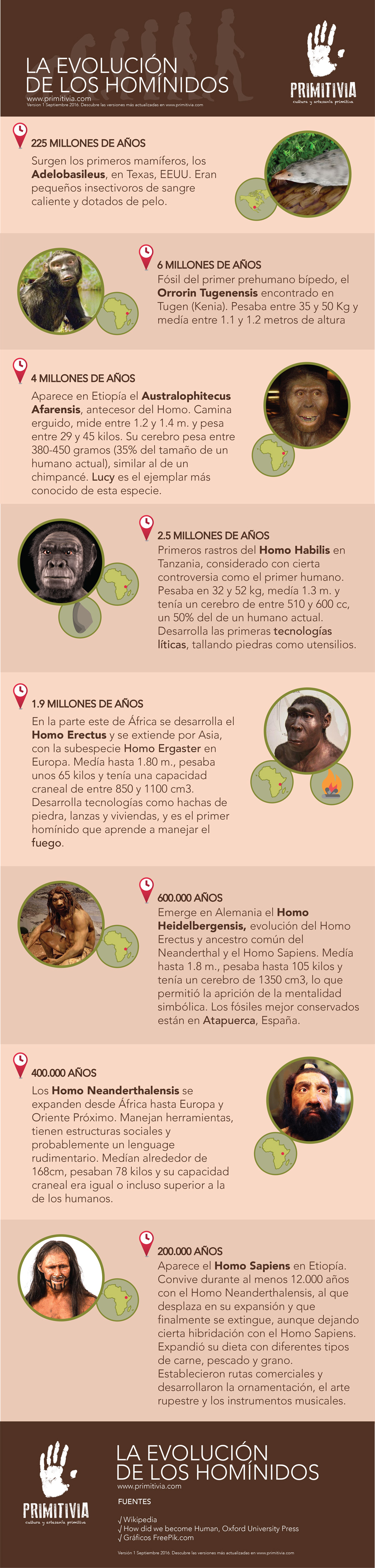evolucion-hominidos-primitivia